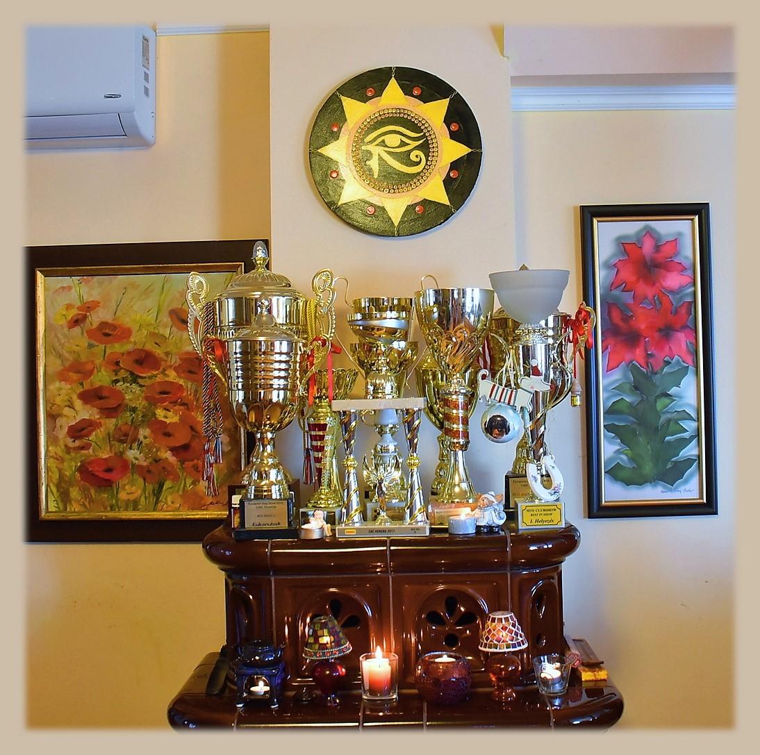 Ősi energiaáramlás mandala festmény (vásárlói visszajelzések)
